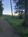 Chemin Forestier du tracé
