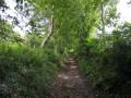 Le Val au départ de Touffreville-la-Cable