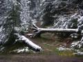 Massif du l'Ormont