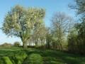 Entre Brenne et vallée de la Creuse à Nuret-le-Ferron