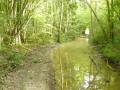 Chemin humide