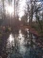 Chemin inondé