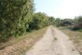 Chemin le long du Chenal du Nord