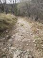 Chemin menant au jalon le Valoubière