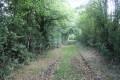 Chemin ombragé à la sortie de la Brochetière