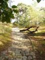 Chemin pavé