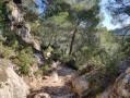Chemin pour redescendre sur le Tholonet