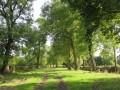 Chemin rural traversant les Priaux et le Pré Tabaud
