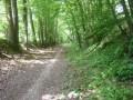 Chemin sur la ligne du Tacot.