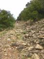Chemin très pierreux ...