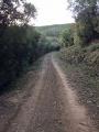 Chemin Type