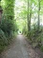 Chemin vers Hennebont