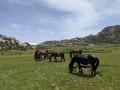 Monte Incudine en Corse du Sud