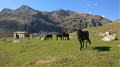 Des Étangs de Fontargente aux Étangs de Joclar en passant en Andorre