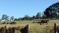 Le Domaine de Chignac au départ d'Arnac