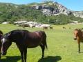 La Corse Étape 4: Col de Vergio au Lac Nino