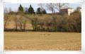 Boucle de Saint-Cricq-de-Chalosse