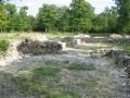 Site médiéval du Bois de Cestres