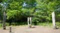 Clairière dans le bois du Burck