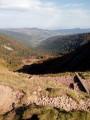 Col de Falimont vers la vallée de Frankenthal