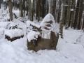 Col de Schlingoutte - Stèle