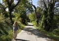 De Viens au Col des Quatre Chemins
