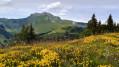Col du Rati depuis le Mont Caly