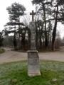 En forêt de Saint-Germain-en-Laye