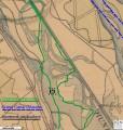 Promenade dans l'ancien lit du Rhin : la Petite Camargue Alsacienne