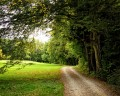 Chemin de la Caussade