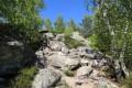 Dans la descente de la Roche au Four (sentier des 25 bosses)