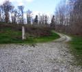Dans la Forêt de Berdoues