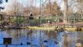 Dans le parc de l'Eiblen