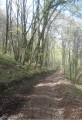 Petit parcours de marche rapide vers Courtagnon