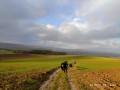Dans les champs sous la pluie et le vent