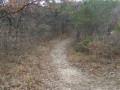 Début du sentier bois de Fontbrenous