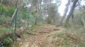 Début sentier forestier de Saint Michel