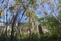 Des bois de Chapulay au château de Septème