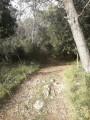 Boucle de la Grotte de la Chèvre d'Or à Roquefort-les-Pins
