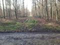 Départ de la Ligne Perrier sur la Route Forestière de Haussez en forêt d'Eawy