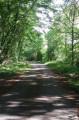En forêt de Moulière