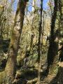 La Vallée Sauvage du Dadou