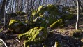 Des rochers et de la mousse