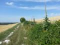Sentier du Croît