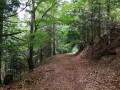 Les Cascades depuis Albepierre-Bredons