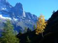 Descente sur le Col des Montets