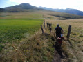 Randonnée sur le massif adventif autour du Mont-Dore