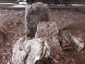 Dolmen à Brevilliers