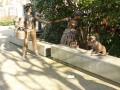 Sculpture d'Alphonse Daudet