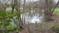 En amont de l'étang des Roches
